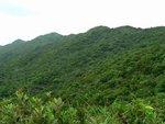 龍脊郊遊徑,是亞洲區2004年最佳市區遠足徑 P1100344
