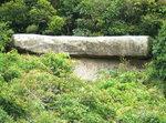 054:棺材石(棺身部份被荊棘所困