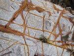芋頭石(黃金海岸)楊志文提供 P1500465C