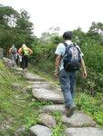 登觀音山(膝頭哥山) P1550295