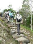 登觀音山(膝頭哥山)  P1550298