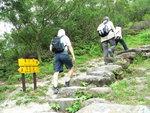 登觀音山(膝頭哥山)  P1550300A