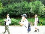 水杉(荃錦坳 ) P1600017