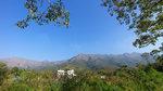 從集合地點山寮路遠眺是日遠足主題八仙嶺 IMG_1135r