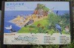 野柳岬角常見的鳥