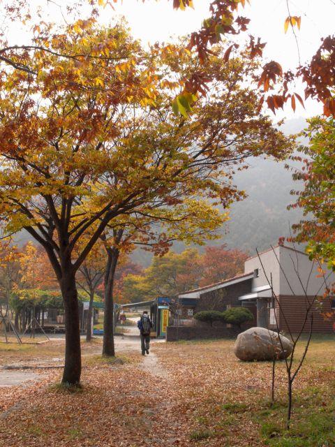 Seorakdong campsite