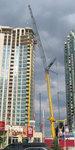 crane15