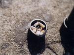 """Buried 埋葬"", Yuen Long Plaza 元朗廣場, 21/4/2002"