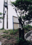 """Twisted 曲"", 尖鼻咀, 21/4/2002"