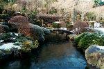 冰封了的池塘