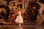 天鵝湖芭蕾舞劇