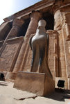 The falcon statue in front of Outer Hypostyle Hall