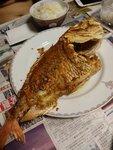 一碗飯一條魚知足矣