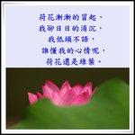 IMG_8749