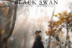 Charllote Wai black swan 10