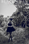 Charllote Wai black swan 15