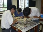 20110608-dissection-01