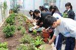 20141205-my_garden-02