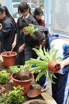 20141205-my_garden-15