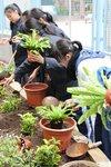 20141205-my_garden-16