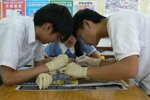 20111018-dissection-02