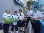 20170925-organic_farming-001