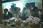 20111111-hoihawan_02-02