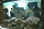 20111111-hoihawan_02-04