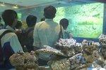 20111111-hoihawan_02-05