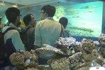 20111111-hoihawan_02-06