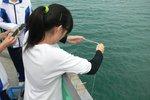 20111111-hoihawan_11-02