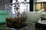 20120328-sciencefair-03