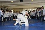 20120312-judo-02