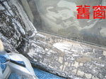 大圍文禮閣鋁窗 (9)