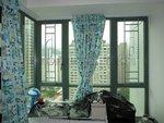 沙田皇御居綠色鋁窗 (1)