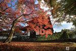 Japan_10