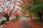 Japan_39