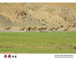 IMG_0214a
