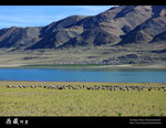IMG_1059a