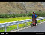 IMG_8293a