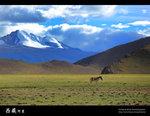 Tibet55