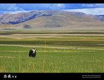 Tibet_61