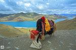 Tibet_84