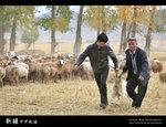 Xinjiang_23