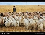 Xinjiang_24