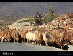 Xinjiang_41