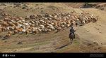Xinjiang_80